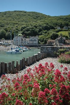 Porlock Weir, Exmoor. Photo by Sandie Flood.