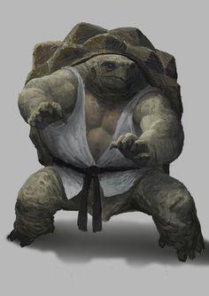843b63e7c3e24e8090772c7355f0527e--turtle-warrior-tortoises.jpg (236×334)