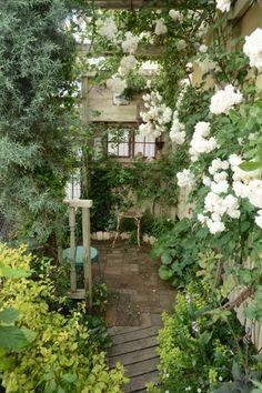 ここはNY? の画像|Nora レポート ~ワンランク上の庭をめざして~