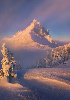 Clearing, Oregon, USA, by Marc Adamus, www.marcadamus.com/photo/the-cleaning/
