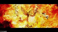 EXCLUSIVE: First look at Mockingjay symbol for final Hunger Games installment http://dailym.ai/1GX45IU