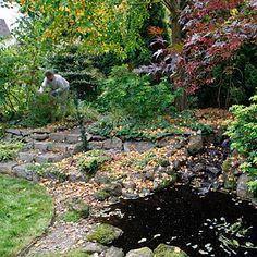 A backyard for a nature lover - 3 Backyard Garden Ideas - Sunset