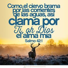 Salmos 42:1 Como el ciervo brama por las corrientes de las aguas, Así clama por ti, oh Dios, el alma mía.♔