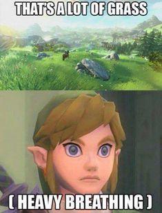Haha! Link / the legend of Zelda