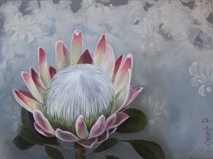 King Protea, oil on canvas, www.christellepretoriusart.co.za , Protea Art, Protea Flower, Floral Illustrations, Botanical Illustration, Illustration Art, Polychromos, Watercolor Flowers, Painting Flowers, Chalkboard Art