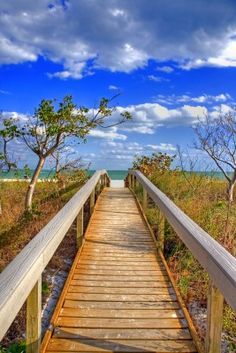 Tampa, Florida = Stunning. I love the walk to the beach