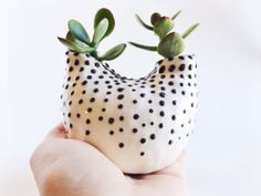 White and Black Ceramic Vase  Ceramic Planter  by PotteryLodge.