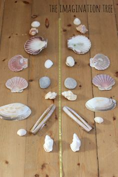 Making symmetrical patterns with shells and natural materials.....the natural stuff again!