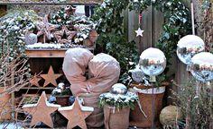 Kübelpflanzen, die auf der Terrasse rund ums Jahr einen schönen Anblick bieten, sind begehrt. Sind sie zudem robust, winterhart und bleiben auf Dauer klein, schlägt das Herz jedes Topfgärtners höher.
