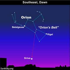 The very noticeable constellation Orion the Hunter rises before dawn at this time of year, recognizable for the short straight line of three stars that make up Orion's Belt. And the sky's brightest star Sirius – sometimes called the Dog Star because it's part of the constellation Canis Major the Greater Dog – follows Orion into the sky at or close to dawn.