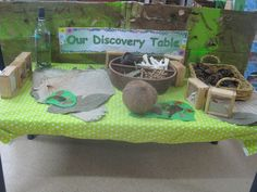 I want to have themed discovery science tables to open up science units. If the students can come up to a table and use their 5 senses to explore-- that is being a scientist. Even before you teach them anything, they can learn themselves.