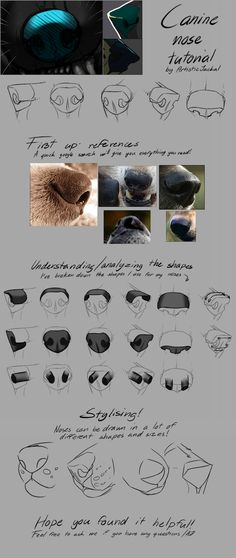artist-refs:  Quick canine nose tutorial by ArtisticJackal