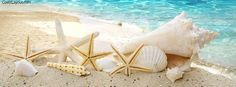 Seashells Ocean Facebook Cover coverlayout.com