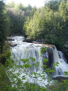 Black Water Falls, Davis West Virginia, U.S.A. Near Canaan Valley