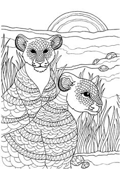 Cubs Adult Colouring Page In Sheets