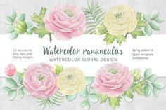 Watercolor ranunculus. by Natali_art on @creativemarket