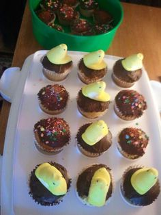 Easter cup cakes with peeps