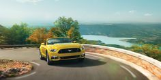 You'll Wish Real Life Had More Chase Scenes |Test Drive the New 2015 Ford Mustang at www.EncinitasFord.com