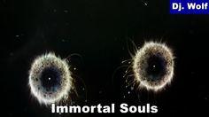 Dj. Wolf: Immortal Souls