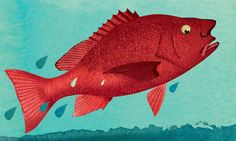 How the Scent of Fear May Be Picked Up by Others - When one fish is injured, others nearby may dart, freeze, huddle, swim to the bottom or leap from the water. The other fish know that their school mate has been harmed. But how?