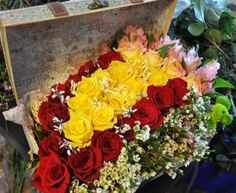 A selection of bright golden roses centered around red roses. Show her she's the centre of your life! Golden Roses, Gold Coast, Red Roses, The Selection, Centre, Floral Wreath, Bright, Wreaths, Life