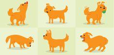 Reconheça as reações caninas de acordo com sentimentos e sensações do bicho