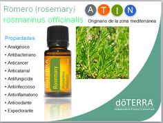 Healthy Hair Spray 2 Drops Of Each Oil Rosemary