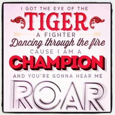Katy Perry - Roar (I know, completely cheesy, so sue me)
