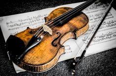 Violín / Violin / Violon / Violino / Violine