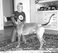 Dog Obedience Training through Targeting - Whole Dog Journal Article