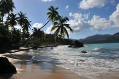 Playa Colorado, Samana, Dominican Republic