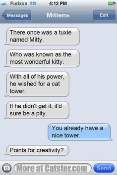 Texts from Mittens: The Not-on-Vacation Edition | Catster
