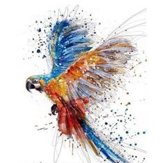 Flying Parrot - Paint By Number Kit – Stiylo