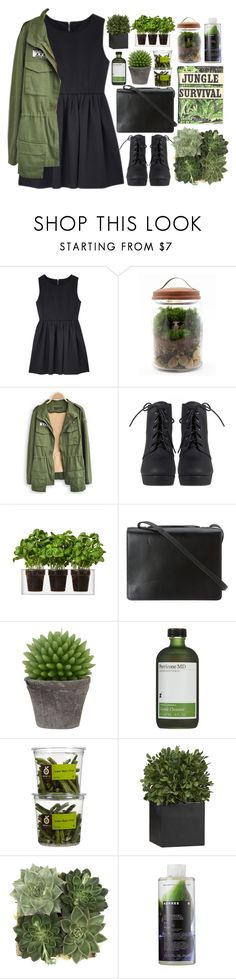 """Kiss me hard before you go"" by annaclaraalvez ❤ liked on Polyvore featuring Twig Terrariums, Boskke, BCBGMAXAZRIA, Broste Copenhagen, Perricone MD, Crate and Barrel, Jayson Home and Korres"