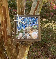 "8""x 8"" Beach Glass Wall and/or Window Art/Seashell Art/Resin Art/Unique Coastal Decor/Beach House Decor/Sun Catcher/Great Christmas Gift  Handmade in South Carolina with high quality materials (seashells, crushed shells, succulents, sand pebbles, finger starfish) and secured with care. The design is Seashell Art, Starfish, Types Of Carpet, Window Art, Sun Catcher, Beach Art, Photo Displays, Resin Art, Coastal Decor"