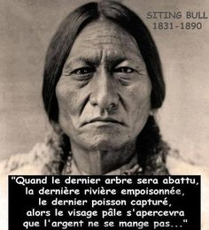 Chief Sitting Bull (Tatanka iyotake), a Hunkpapa Sioux spiritual leader was 45 at the time of the Big Horn battle. Jefe Seattle, Einstein, Good Quotes For Instagram, Quote Citation, French Quotes, Native American Indians, Sioux, Decir No, Best Quotes