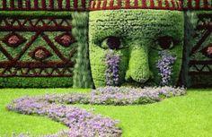 Interesting Design for Garden