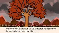 herfst klokhuis bladeren - YouTube