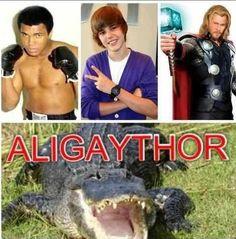 AliGayThor *like*