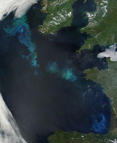 In pictures: Satellite eye on Earth - May 2010
