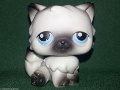 Littlest Pet Shop Black White Grey Himalayan Persian Long Hair Cat Hasbro 60 #Hasbro