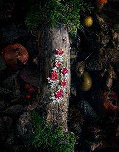 绿林仙踪 海瑞·温斯顿2013珠宝大片