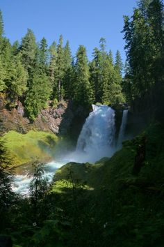 Went hiking Sunday at Sahalie Falls with my soulmate and mother in law, beautiful!