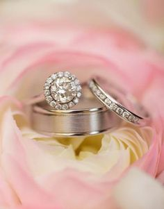 Engagement ring and wedding bands set in pink roses for the ring shot. Only ring pic i actually like Engagement Ring Photography, Engagement Shots, Fall Engagement, Engagement Ideas, Winter Engagement Pictures, Country Engagement Pictures, Botanical Gardens Wedding, Ring Shots, Diamond Wedding Rings