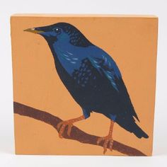 Andy Bridge Paintings of Birds - Starling: Painted on to wooden box frame constructions and then sanded back in parts to alter the texture of the surface. Andy's commercial illustration work is often used on book covers. He can count the covers of various Man Booker prize winning tomes as his including Life of Pi and Wolf Hall.