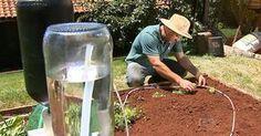 Pesquisador cria sistema de irrigação que economiza água e energia em SP