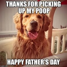 Thanks for being you - Dad! All Dad's count on Father's Day. ⁠ ⁠  #dad #happyfathersday #love #father #family #fathersdaygift #gift #fathersdaygifts #giftideas #dads #daddy #instagood #dadsday #fathers #dadlife #gifts Happy Fathers Day, Fathers Day Gifts, Mans Best Friend, Best Friends, Pup, Daddy, Thankful, Dogs, Count