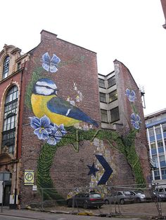 Converse's Wall to Wall Project: Manchester by Faunagraphic
