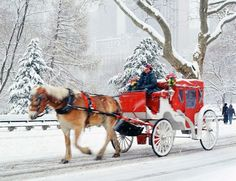 New York City carriage ride in the winter #classic #accorvacation