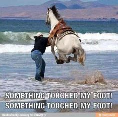 Something touched my foot! Image source: Facebook page Farmer's Pal www.FARMERSPAL.com